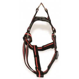 EVERYDAY Life CONECKT black/orange nylon harness