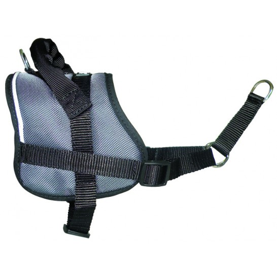 EDUCATION CONECKT training harness