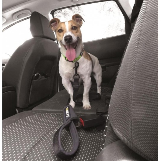 Security Coneckt Leash Car Safety Belt For Dogs Num Axes