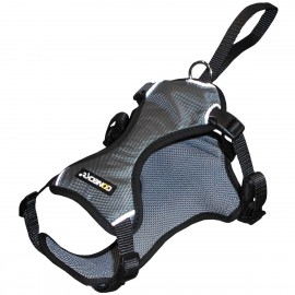 SECURITY CONECKT road trip harness