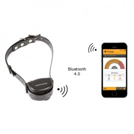 anti-barking dog collar Canicalm Smart