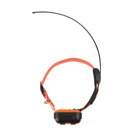 Canicom GPS-collier supplémentaire
