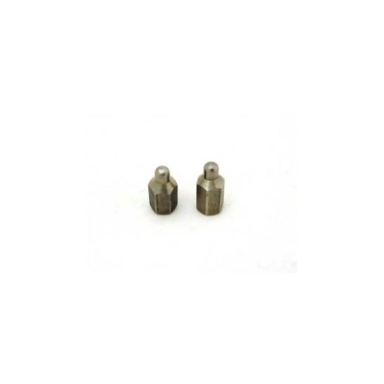 Lot de 2 électrodes courtes Canicom 2000 Caniway